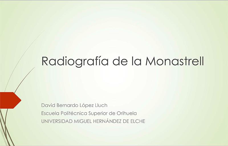Radiografía de la monastrell