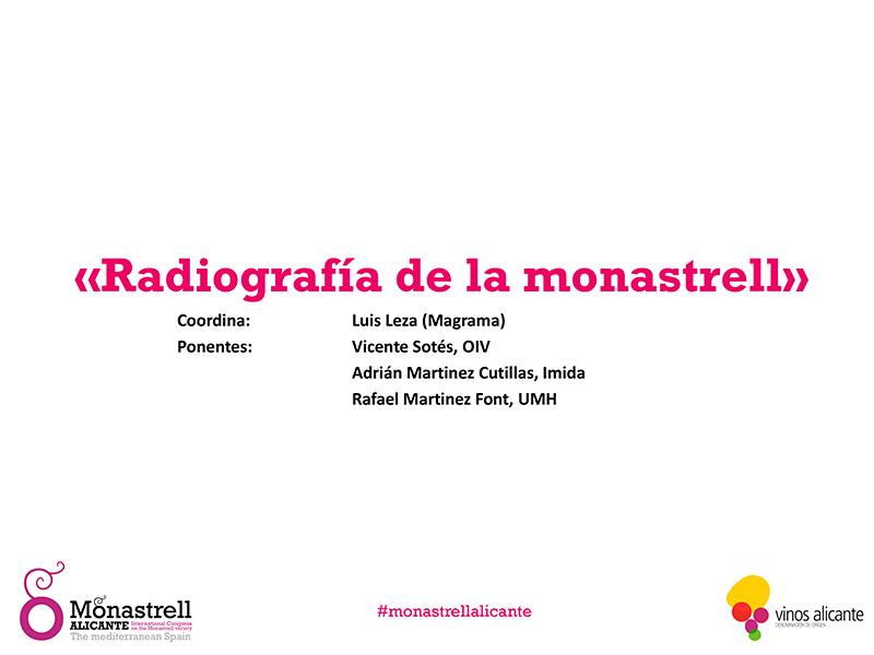 Radiografía de la Monastrell, Luis Leza