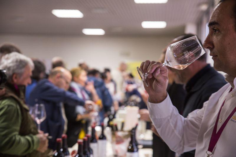 premios_winecanting-6954